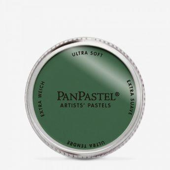 PanPastel профессиональная пастель. Цвет Chromium Oxide Green Shade 6603 - (in 036)